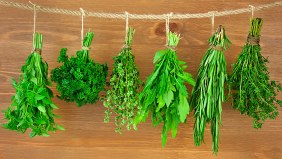 healthy-herbs-and-cooking-tips
