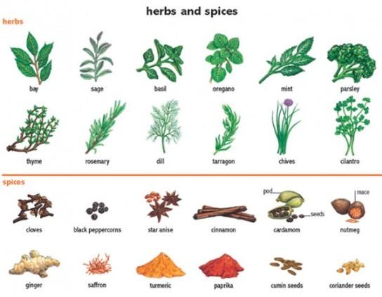 herb-600x466